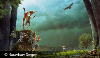 Before the Rain by Buravtsov Sergey